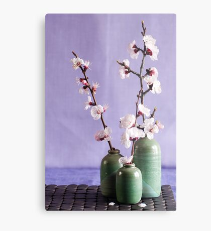 Blossoms and vases Metal Print