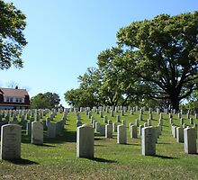 Wilmington National Cemetery by D R Moore