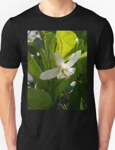 Orange Blossom Unisex T-Shirt