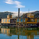 Houseboat Livin' by Ann J. Sagel