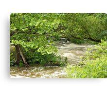 Unami Creek - Green Lane - Pennsylvania - USA Canvas Print