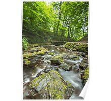 Bridge at Glenoe Waterfall Poster