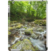 Bridge at Glenoe Waterfall iPad Case/Skin