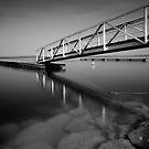 Lac du Der pontoon by Victor Pugatschew