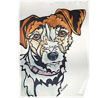 Dog Art #24: Penny the Jack Russell Terrier Poster