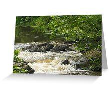 Unami Creek at Trinity Bridge #1 Greeting Card