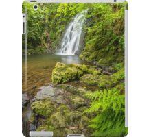 Glenoe Waterfall iPad Case/Skin