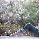hush now, watch the stars fall by Sarah McCay
