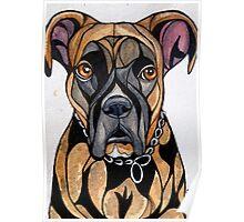 Dog Art #14: Chelsea the Boxer Poster