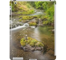 Glenoe Stream iPad Case/Skin