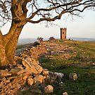 The Folly Tower by Steve  Liptrot