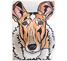 Dog Art #8: Cassidy the Smooth Collie Poster