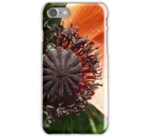 Almost withered Poppy iPhone Case/Skin