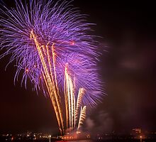 Purple Palm Trees – Boston Fireworks by Owed To Nature