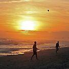 Beach Play by Ree  Reid