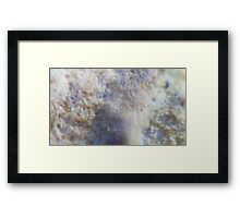 Macro shot with bellows (Can you guess what it is)  Framed Print