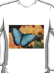 Peleides Blue Morpho T-Shirt