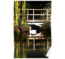 Impressionist Swan Poster