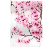 Pink Peach Blossoms in Spring Poster