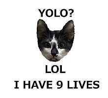 Yolo? Lol, I Have 9 Lives Photographic Print