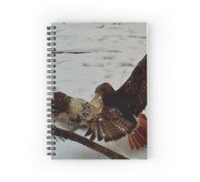 Hawk Fight 1 Spiral Notebook