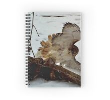 Hawk Fight 2 Spiral Notebook