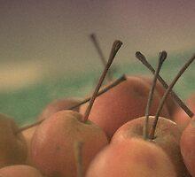 Crab Apples by Robert Knapman