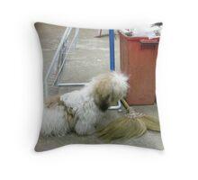 Hi Mate u Wanna' Play Throw Pillow