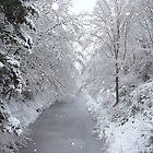 Snow Canal by Serunson