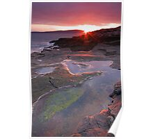 Elevated Tidal Pools Poster