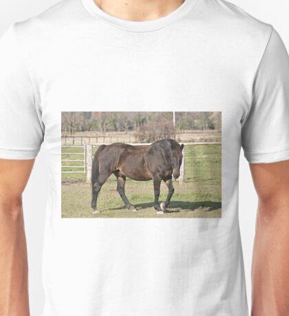 Ringo - Silver Creek Ranch, Ottawa, Ont Unisex T-Shirt
