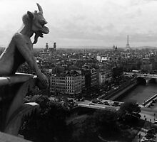 BW France Paris Notre Dame Cathedral the devil 1970s by blackwhitephoto