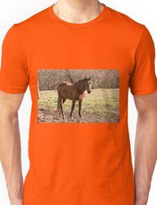 One Fine Lady- Silver Creek Ranch, Ottawa, Ont Unisex T-Shirt