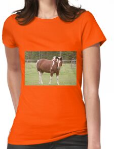Lucy - Silver Creek Ranch, Ottawa, On Womens Fitted T-Shirt