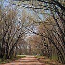 Crossroads by kkphoto1