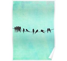Birds on a Wire silhouettes Poster