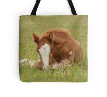 Spring Foal Tote Bag