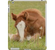 Spring Foal iPad Case/Skin