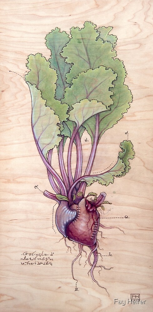 Heart Beet by Fay Helfer
