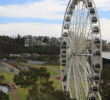 """""""Ferris Wheel from the Bell Tower"""" by Justine Walke"""