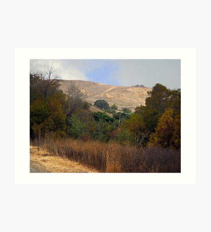 Coyote Hills 2 Art Print