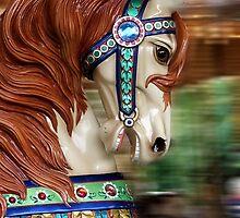 Carousel Horse by Katherine Haluska