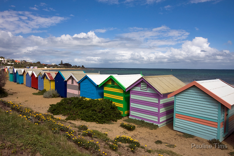 Brighton Bathing Huts  by Pauline Tims