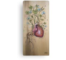 Clover Heart Canvas Print