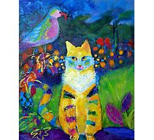 Close Encounters: Cat Sees A Bird  Photographic Print