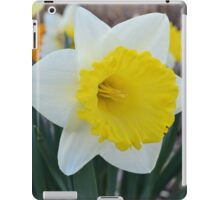 Daffodil in the Garden iPad Case/Skin
