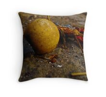 Superstitions Throw Pillow