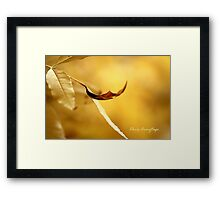 The Golden Years Return Framed Print