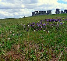 The essense of Stonehenge by leahrenee88