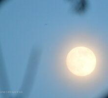 Full Moon 06.30.2015 | Center Moriches, New York by © Sophie W. Smith